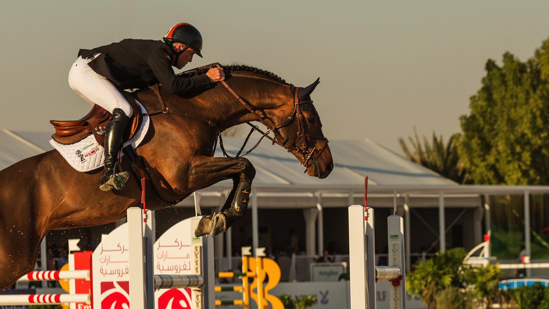 HORSE JUMP SHOW 17